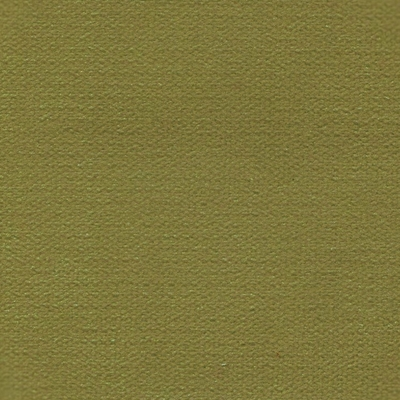 Haute House Fabric - George Apple - Velvet Solid #4245